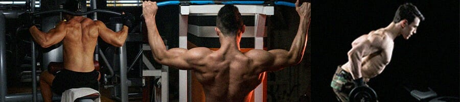 Alternatives for straight arm lat pulldown