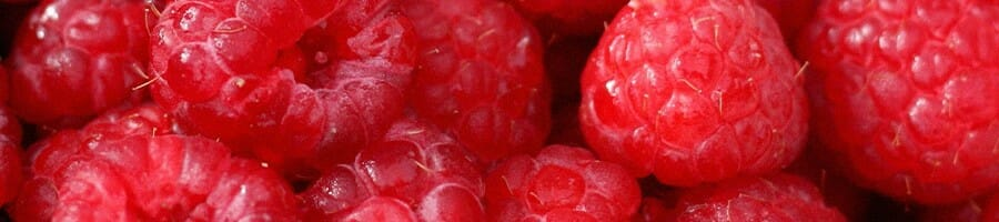Close up picture of raspberries