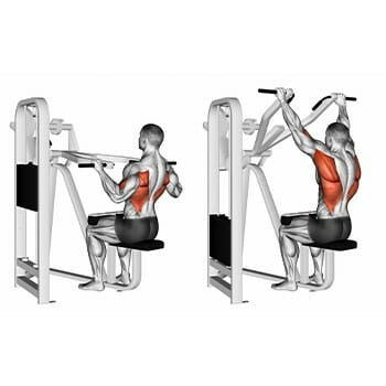 Working muscles when performing wide grip pulldown