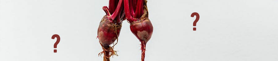 question marks with a beetroot crop