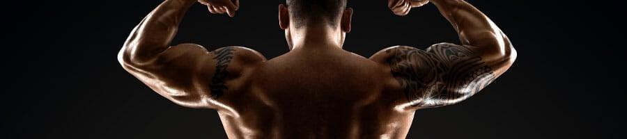 shirtless man showing his back while flexing his biceps