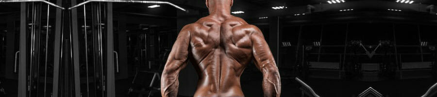shirtless man flexing his back muscles