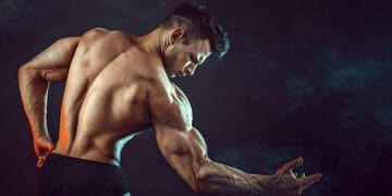 building muscles without protein