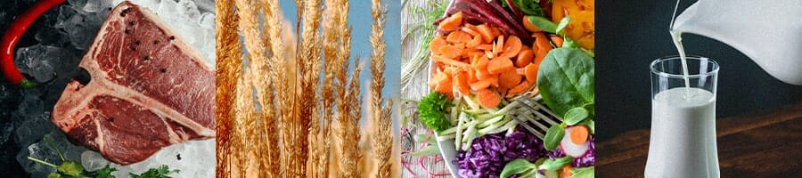 Collage of Meat, wheat, vegetables and dairy milk