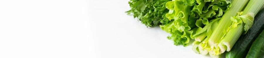 green healthy vegetable leaves