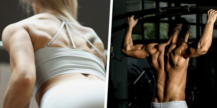 Your guide to back exercises and fat loss