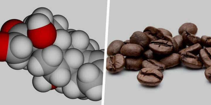 Your guide to Cortisol and Caffeine