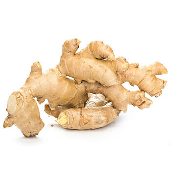A ginger in white background