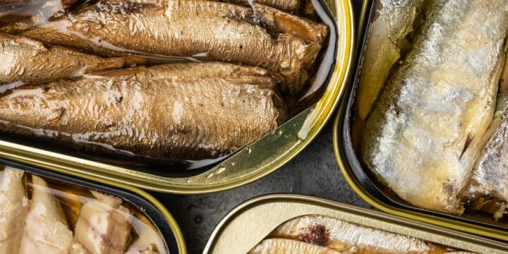 Canned fishes with fatty contents