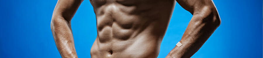 An abdominal muscles